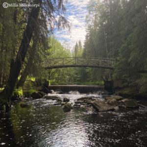 Kuvassa silta ja joki
