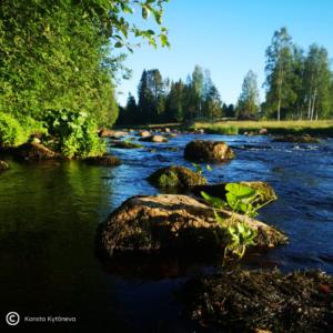 Kuvassa kivi joen virrassa